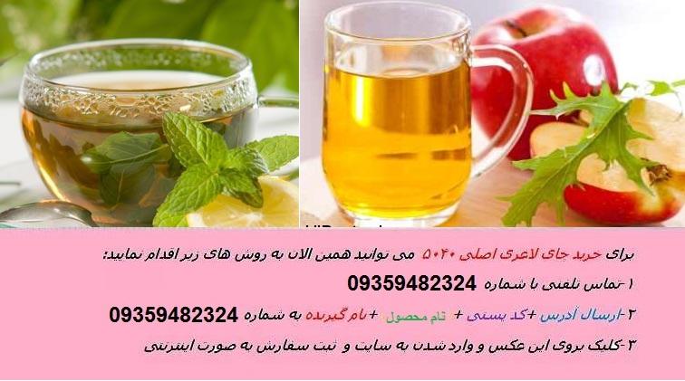 آیا چای سبز باعث لاغری می شود