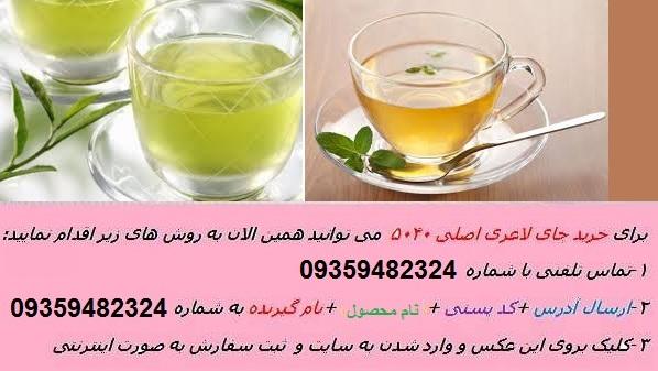 چای سبز لاغری می کند